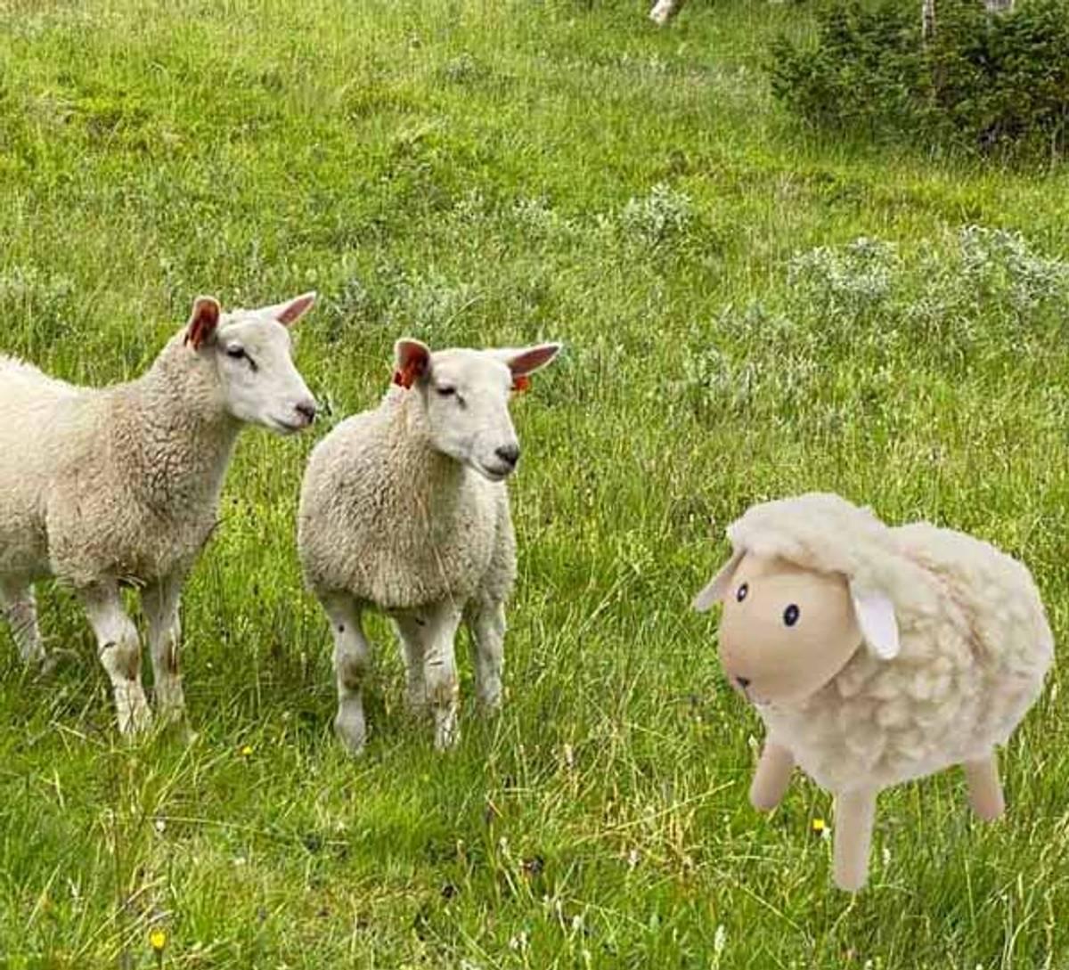 Sau av tre med hvit ull, stor, furu